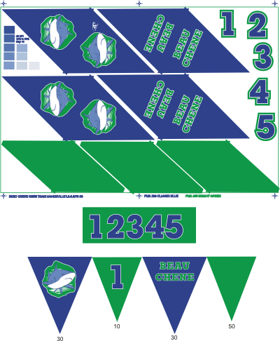 Printed Custom Backstroke Flags